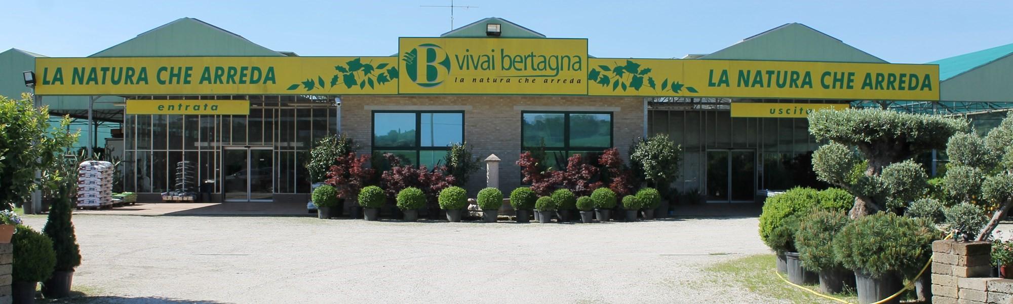 Vivaio Peschiera Del Garda allestimenti floreali per matrimoni e cerimonie